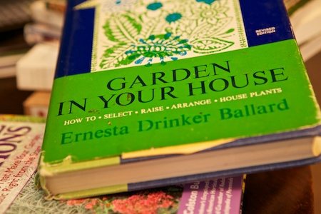 garden in your house