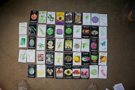 2013 Seed Orders 2