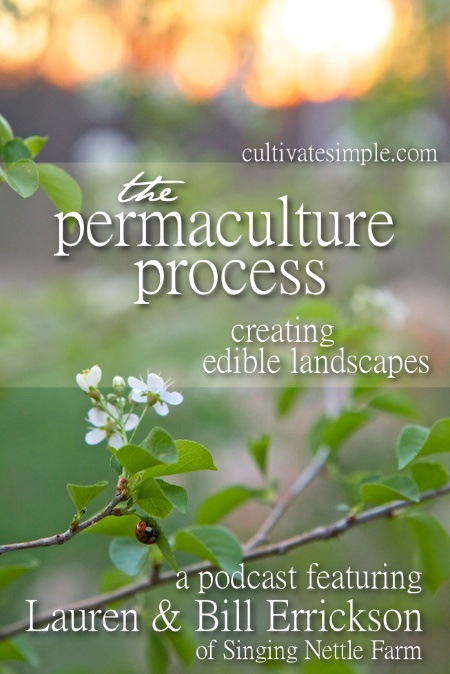 Permaculture Process