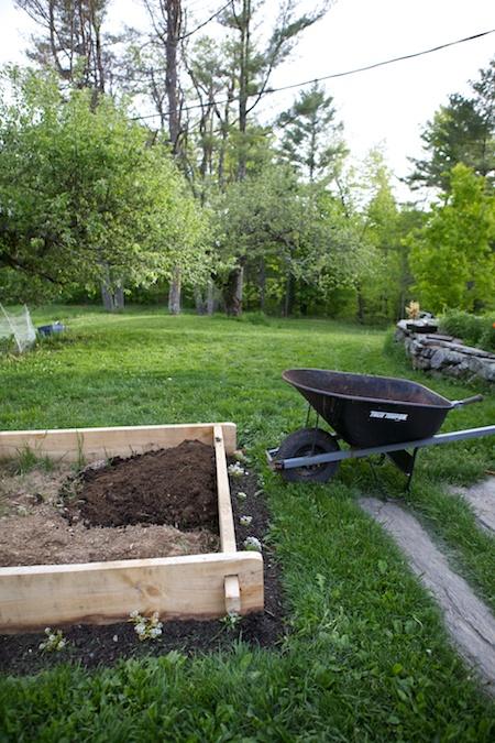 5x5challenge garden 1