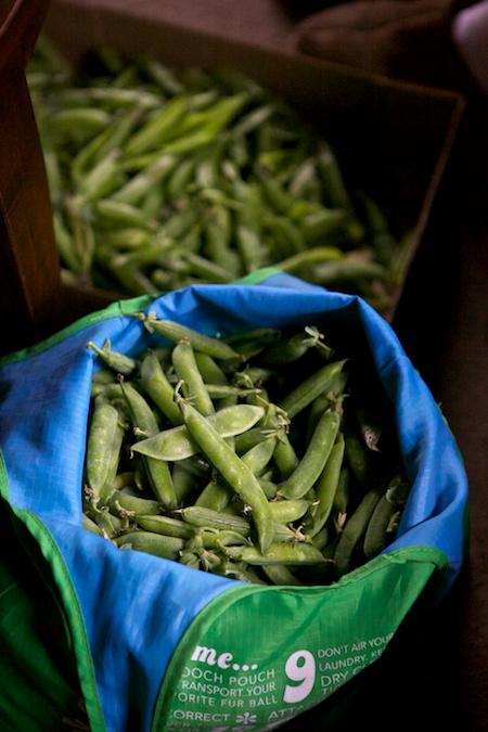 shelling peas 2