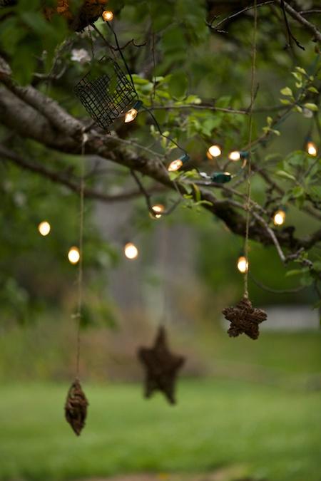 stars in tree 2