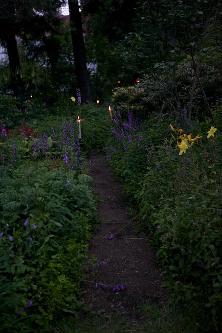 mclaughlin garden illuminated 5