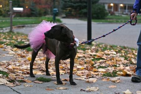 Lucy ballerina 1