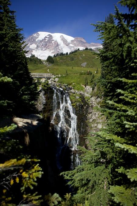 Mt Rainier 6