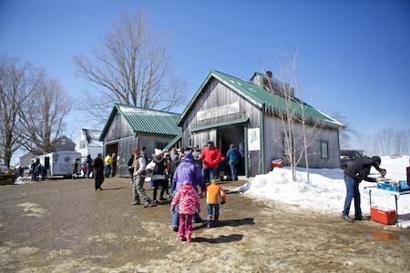 Maine Maple Sunday 14