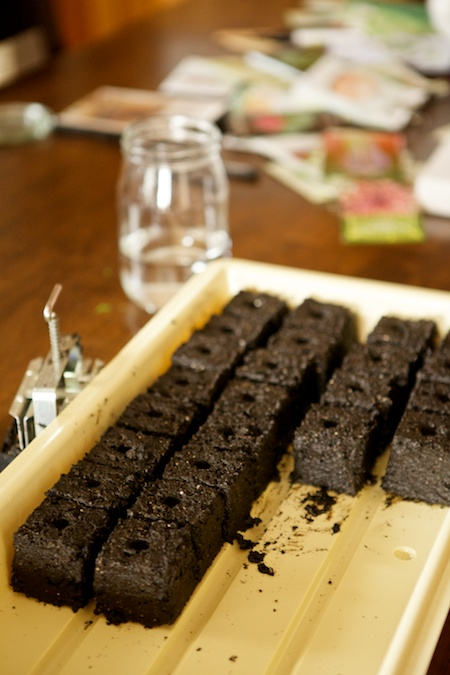 soilbocks 1