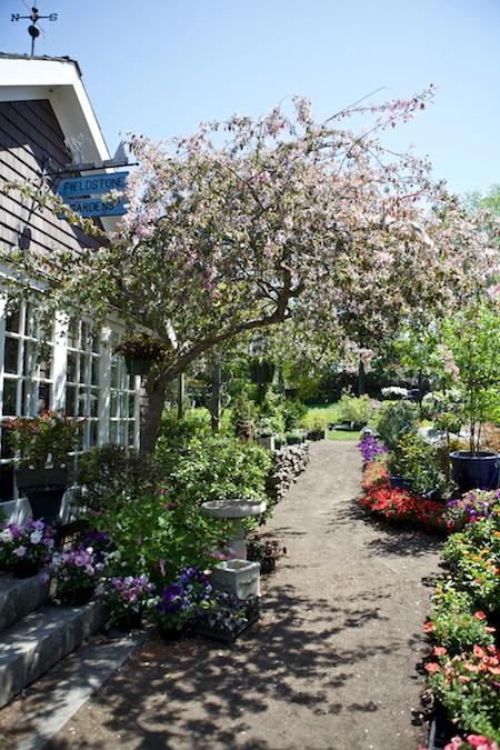 Fieldstone Gardens 12