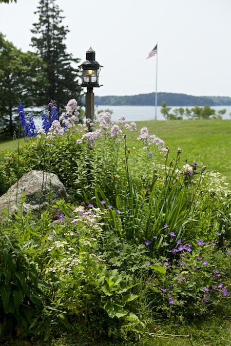 Georges river land trust tour garden 1 3 (1)