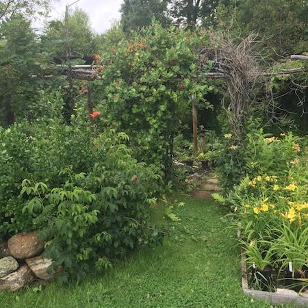 hidden gardens 5