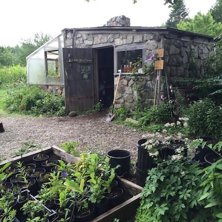 hidden gardens 6