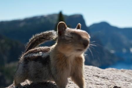 hiking at Crater Lake National Park