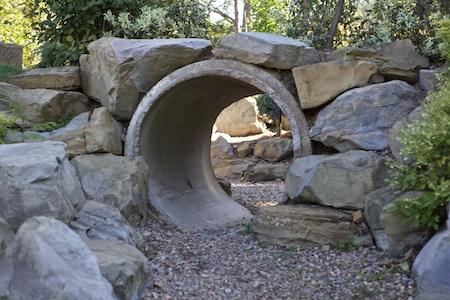 OARDC arboretum 1