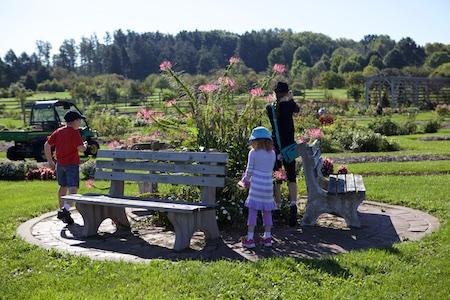 Secrest Arboretum 4