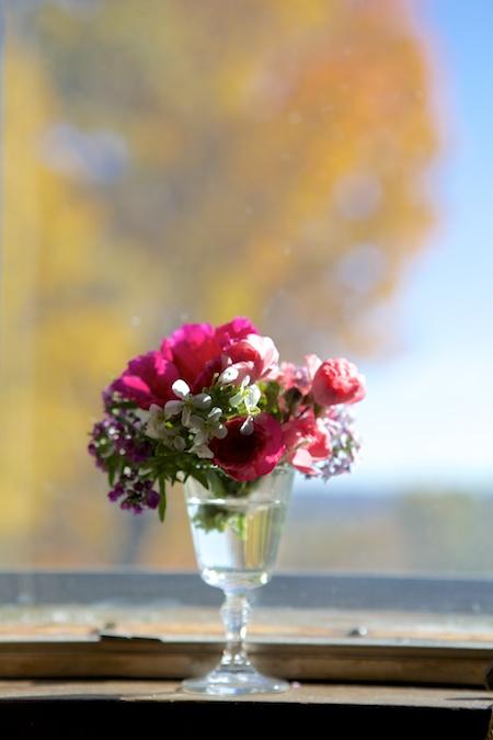 last flowers 1