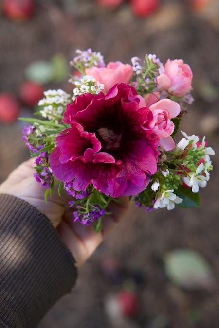 last flowers 2