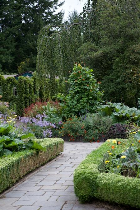 Heronswood formal garden 10