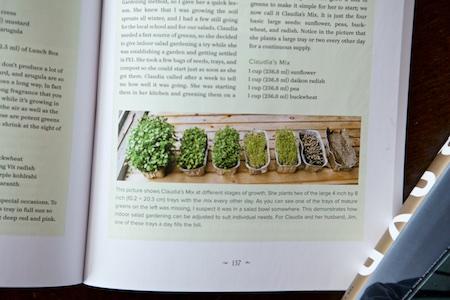 Year round indoor salad gardening 1