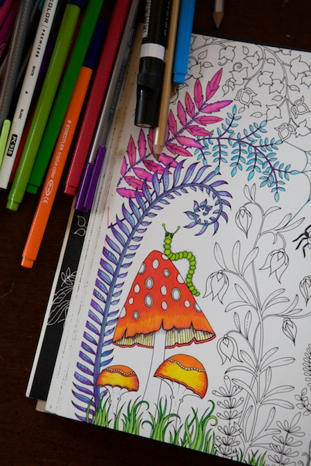 Coloring the enchanted forest 2