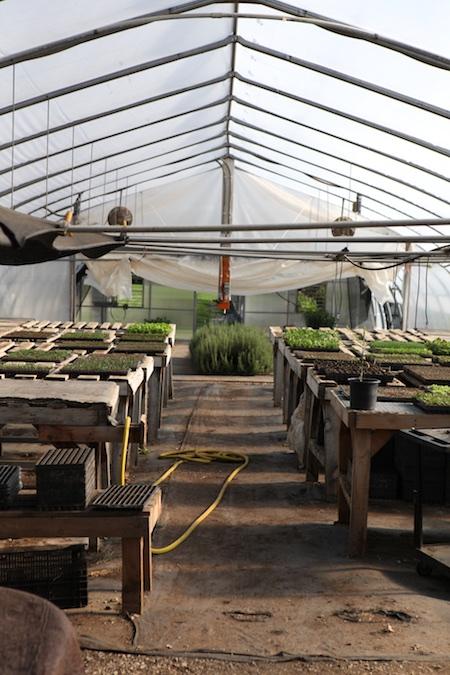 shelburne farms market garden 1