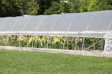 shelburne farms market garden 11