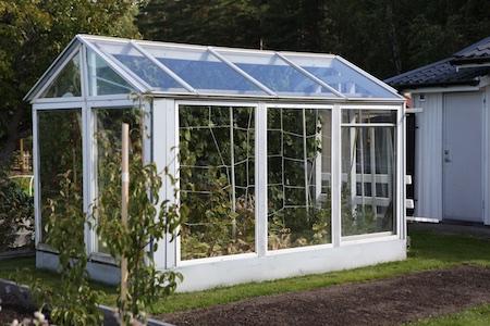 swedish-community-garden-day-4-10