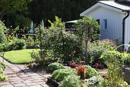 swedish-community-garden-day-4-13