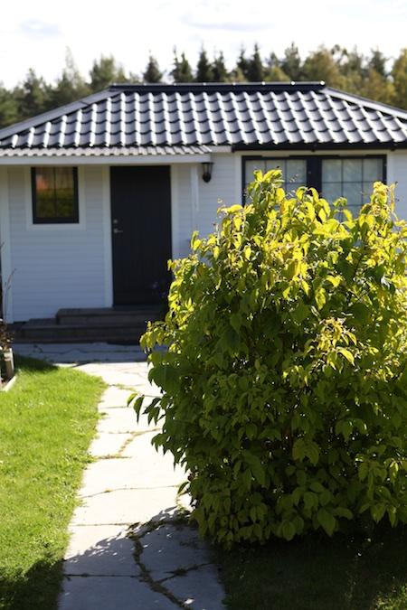 swedish-community-garden-plot-2
