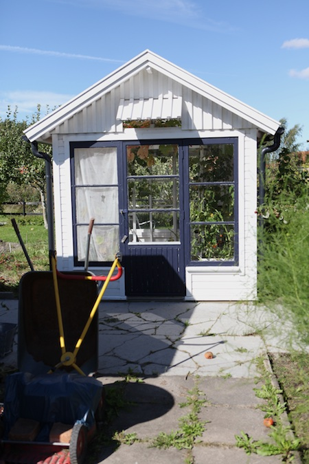 swedish-community-garden-plot-4