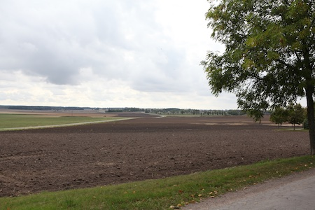 swedish-countryside-3-1