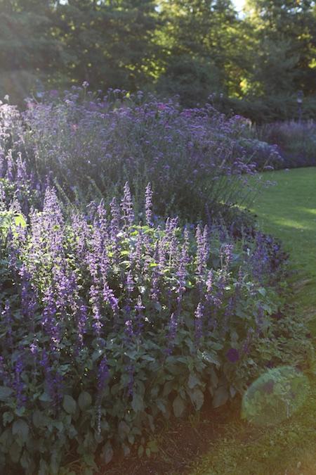 colorblock-gardens-at-stockholm-djurgarten-11