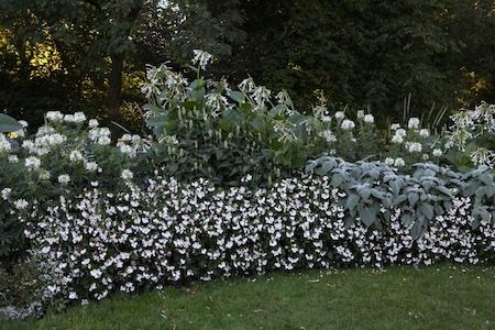 colorblock-gardens-at-stockholm-djurgarten-4