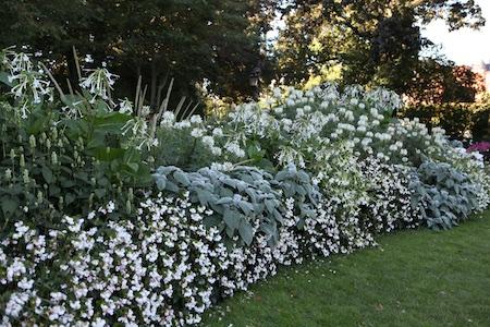 colorblock-gardens-at-stockholm-djurgarten-7