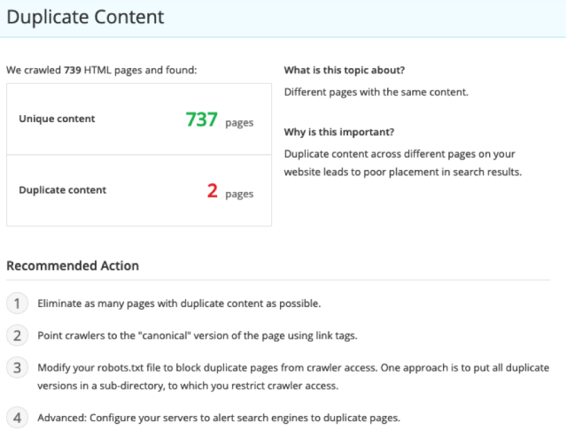 SEO audit report that helps spot and rectify duplicate content