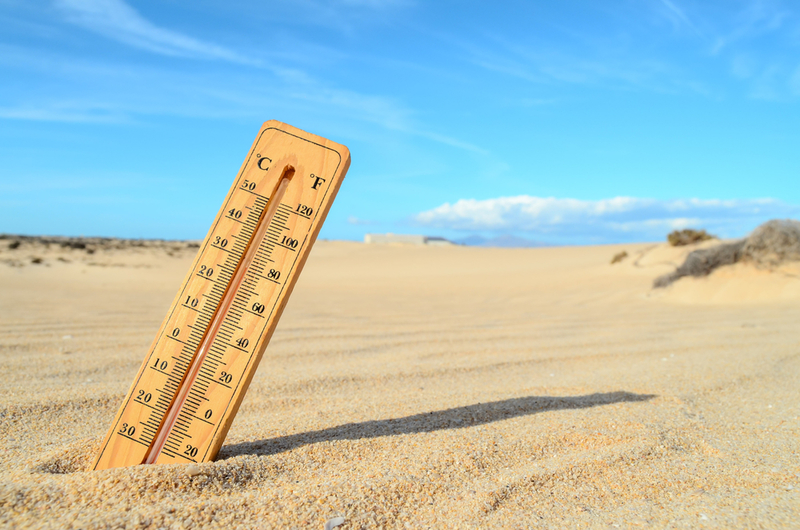 No change in Qld after dire climate report