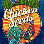 chickenseeds - Zen Colouring Patterns - Adult Colouring Magazine Review