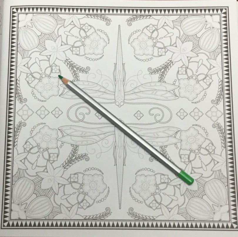 FuerzaNaturalColoringBook 7 1024x1022 - Fuerza Natural Coloring Book