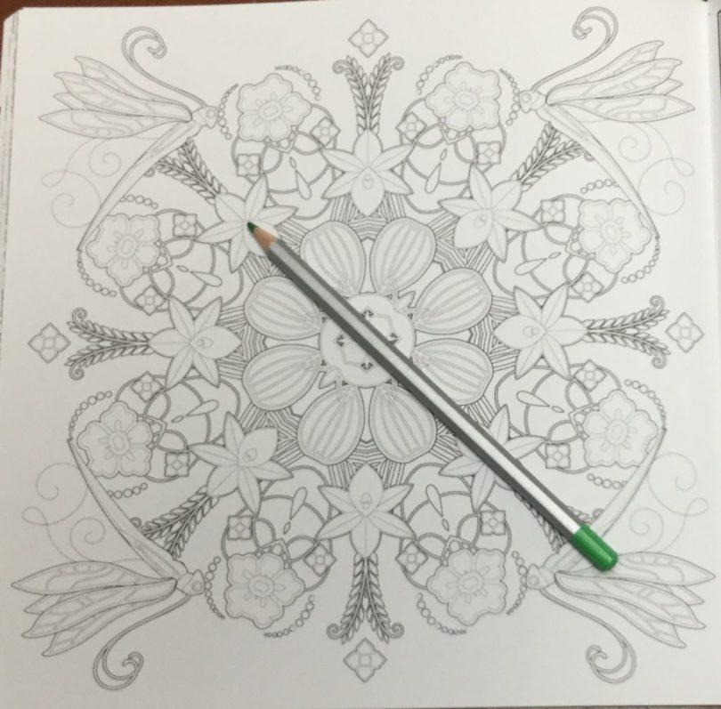 FuerzaNaturalColoringBook  13 1024x1008 - Fuerza Natural Coloring Book