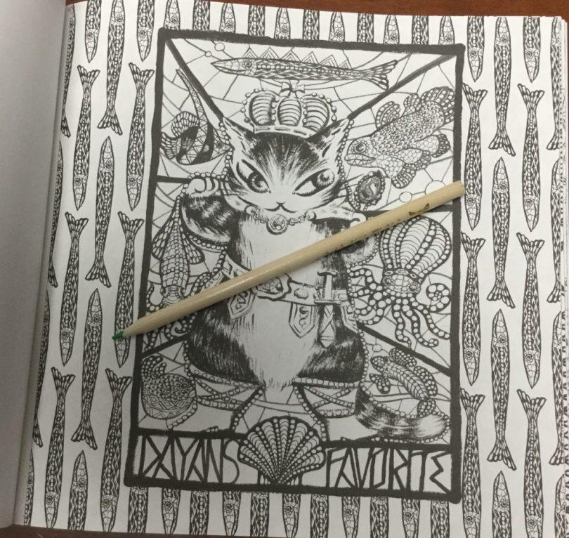DayantheCatColoringBook4 1024x968 - Dayan the Cat - Coloring Book