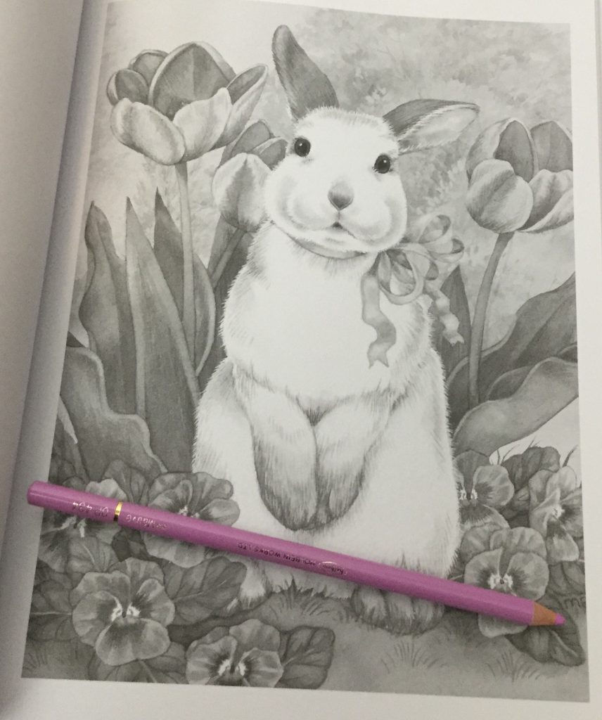 1649895100 adorable animals grayscale coloring book