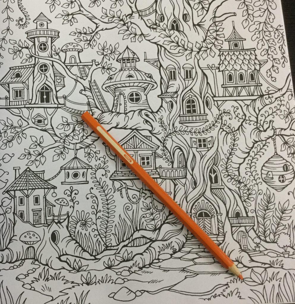 The coloring book review -  Elaborate Tree Houses Kraina Basni Polish Coloring Book