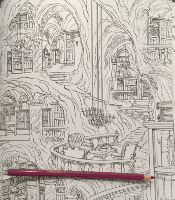 A Court Of Thorns And Roses Coloring Book Review