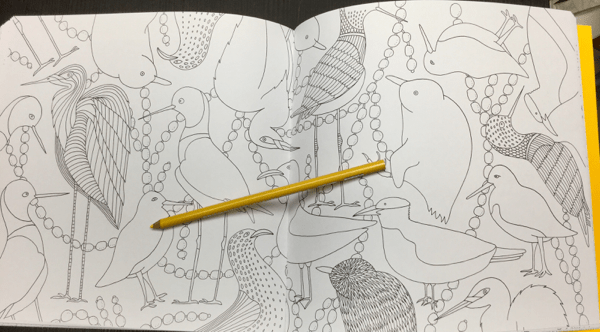All Good A New Zealand Colouring Book Review