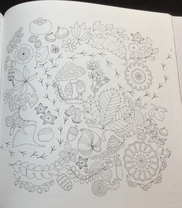 keiko cat coloring book  23 - Yasuragi no Garden - The Walking Path of a Dreaming Cat  Coloring Book Review