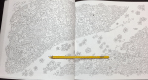 keiko cat coloring book 31 - keiko_cat_coloring_book_31