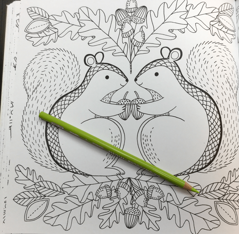 nature seasonal coloring book 34 - Nature: A Seasonal Coloring Book Review