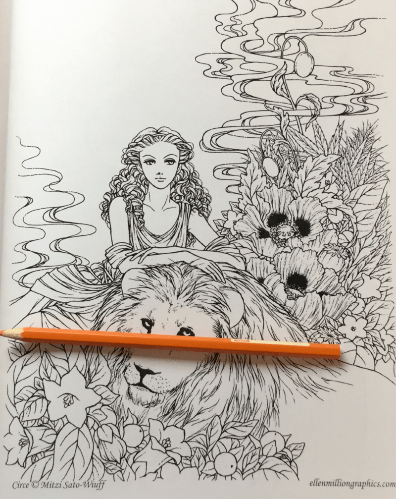 midnight gardens coloring book review 8 - Midnight Gardens Coloring Book Review