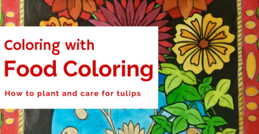 Tulip Garden - Coloring With Food Coloring Experiment (Budget Watercolor Look)