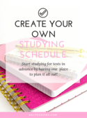 Create your own studying schedule (workbook image)