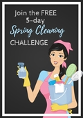 Spring_cleaning_(1)